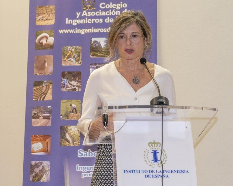Texto del Discurso de María Dolores Pascual Vallés en el Acto de entrega de la Distinción de Colegiada de Honor 2021 del COIM